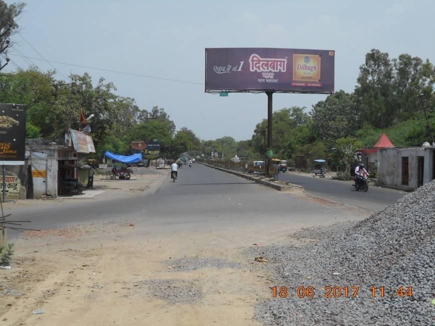 Cod, Kanpur