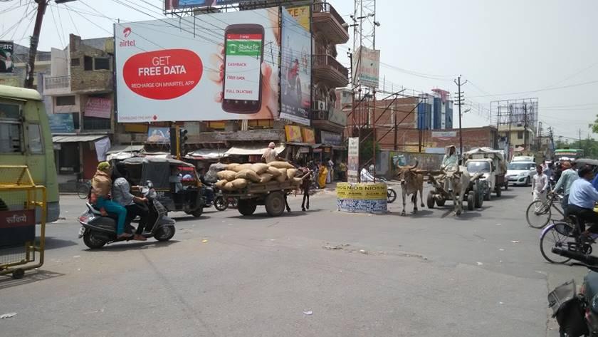 Dubey ka Padao, Aligarh