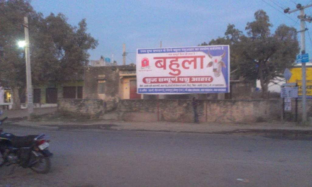 kharwa Near pashu chikitsalaya, Ajmer