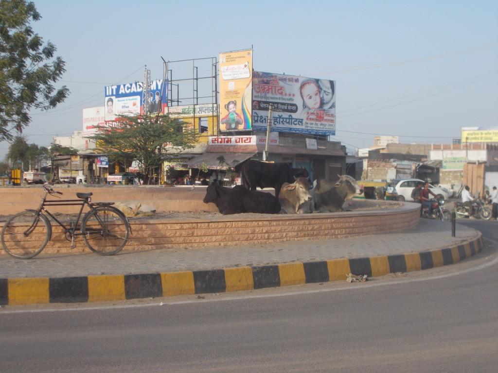 Jhalamand Circle 4, Jodhpur