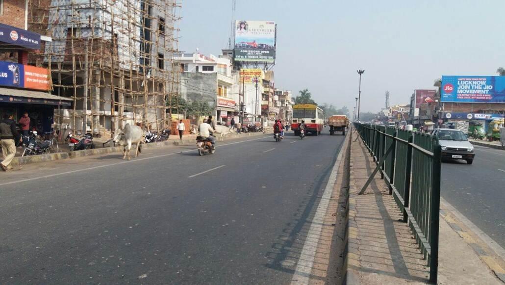 Gauri, Lucknow